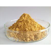 milk thistle powder extract