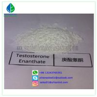 99% Raw Steroid Powders Testosterone Enanthate Test Enanthate Muscle Mass 315-37-07 Judy thumbnail image
