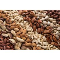 betel nuts Brazil nuts almonds nuts Apricot Kernels Pine nuts Pecan nuts Pistachio Nuts Chestnuts thumbnail image