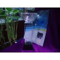 Crystal trophy, crystal medal
