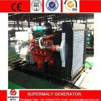 250KW 300KVA Natural Gas Generator set with Deutz engine