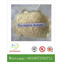 High quality Trenbolone Acetate steroids powder