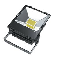 LED Flood light 10-200W, IP65 outdoor lighting, floodlights