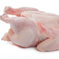 Frozen whole chicken, thighs, drumsticks thumbnail image
