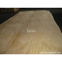 Natural Pine veneer for Plywood without Knot