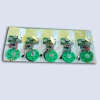 Factory Wholesale Recordable Music Sound Module Chip Slide Tongue for Greeting Cards