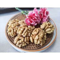Common cultivation type and raw processing type new crop walnut kernels extra light halves
