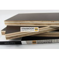 Poplar Core Film Faced Plywood
