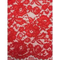Newest Design Lace Fabric for Lady's Underwear