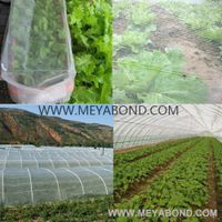 agricultural anti insect mesh protection netting rolls for sale