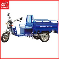 3 Wheel Electric Car/ Electric Tricycle/ Adult Electric Tricycle