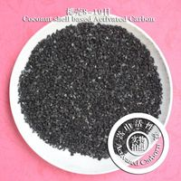 Coconut Activated Carbon for Drinking Water Treatment thumbnail image
