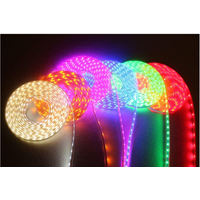 Low voltage waterproof lamp strip 12V lamp belt (can be customized) thumbnail image