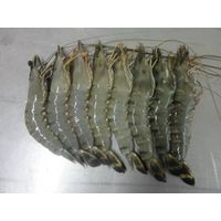 Black Tiger shrimp and Vannamei Shrimp