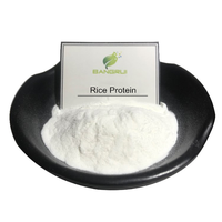 High quality Bulk rice protein isolate powder for sport food additive thumbnail image
