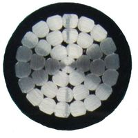 XLPE Insulated Power Cable thumbnail image