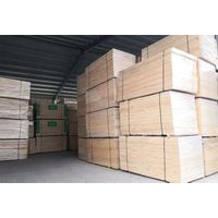 Construction Material, Decorate Material, Furniture Material: Radiata Pine Finger Jointed Board