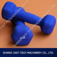 Cast Iron Rubber Vinyl Dumbell