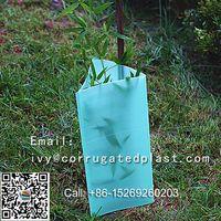 plastic tree guard, corflute tree guard ,PP hollow sheet thumbnail image