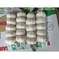 5pcs/200g pure whtie garlic