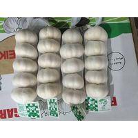 5pcs/200g pure whtie garlic
