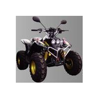 Terrain Vehicle, ATV Vehicles