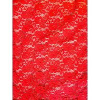 attractive elastic lace fabric