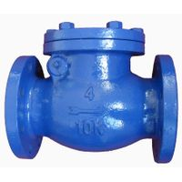 Iron swing check valve thumbnail image