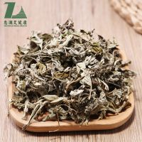 Zhonglan natural dried mugwort leaves wormwood moxa for foot bath body health care