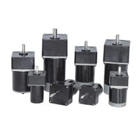Permanent Magnet DC Gear Motor