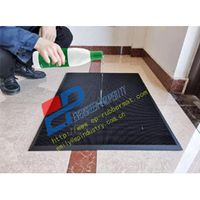 Rubber Disinfection Mat from Qingdao singreat(Evergreen Properity) thumbnail image