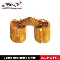 Brass concealed hinge thumbnail image