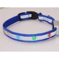 LED dog collar thumbnail image