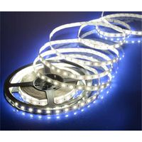 Hot sale 5050 60leds LED SMD flexible lamp strip