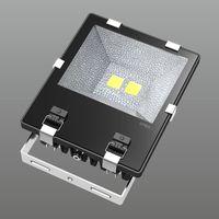 Driverless 100W led flood light portable outdoor lighting input 180-265v