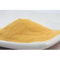 Fermented Soy Sauce Powder