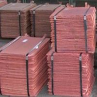 Copper Cathodes, Copper Coils, Copper Strips, Copper Plates.