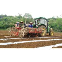 2CZX-2 sugarcane planter, sugarcane planting machine