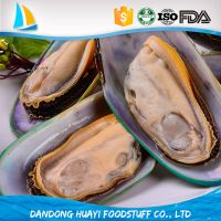 high quality frozen boiled mussel meat