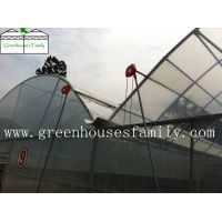 Commercial Greenhouses thumbnail image