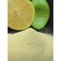 Lemon Concentrate Powder