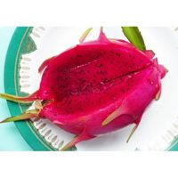 Red dragon fruit