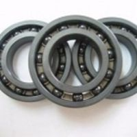 Silicon Nitride Ceramic Bearing