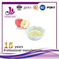Apple Fruit Powder juice concentrate powder thumbnail image