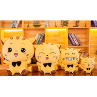 LOST WANDERER New big face cat doll plush toy large pillow doll doll Valentine's Day gift