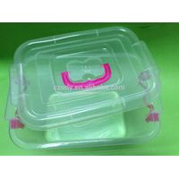 Transparent plastic storage box for food and sundries