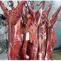 100% Halal Fresh/Frozen Sheep/Goat/Lamb Meat/Carcass thumbnail image