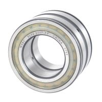 Sealed Double Row Full Complement Cylindrical Roller Bearings SL04 5017 PP