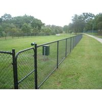 hot sale vinyl green chain link fence