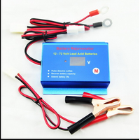 12V 24V 36V 48V 60V 72V battery rejuvenator